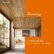 Teto Vinilico a evolução do forro PVC